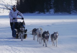 Yukon Quest Mushing- Part 2
